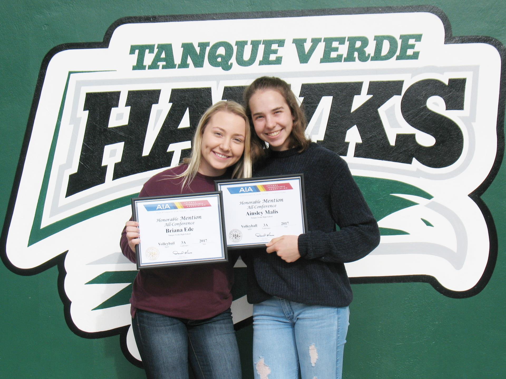 volleyball honorable mentions