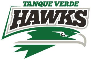 Hawk school logo full