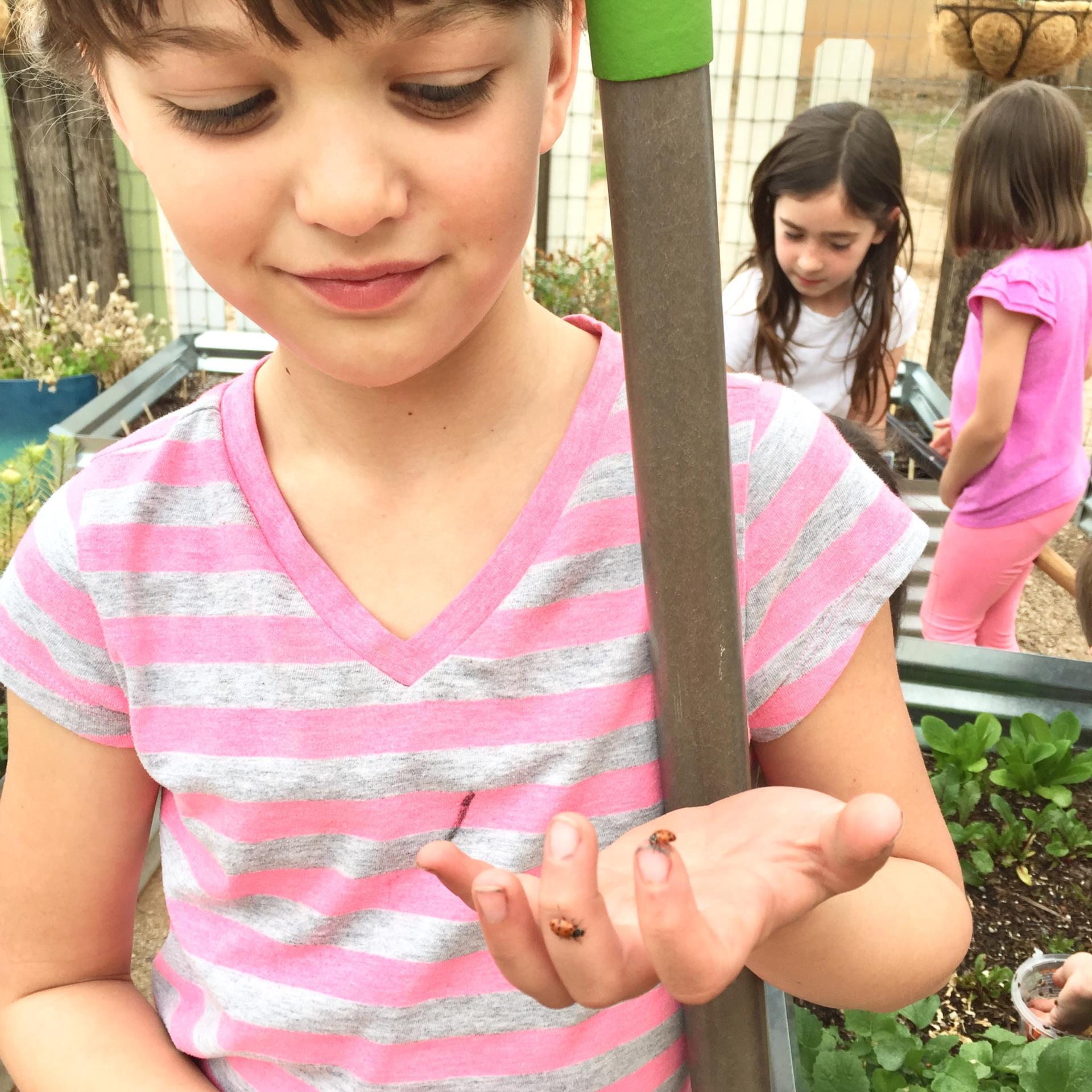 girl with ladybugs